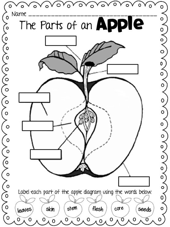 label-the-apple.jpg